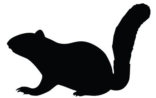 500x315 Squirrel Silhouette Vector Download Silhouette Graphics Animal
