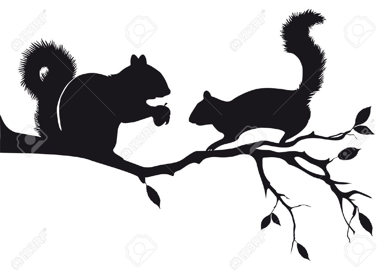 1300x910 Squirrel Stock Illustrations, Cliparts And Royalty Free Squirrel