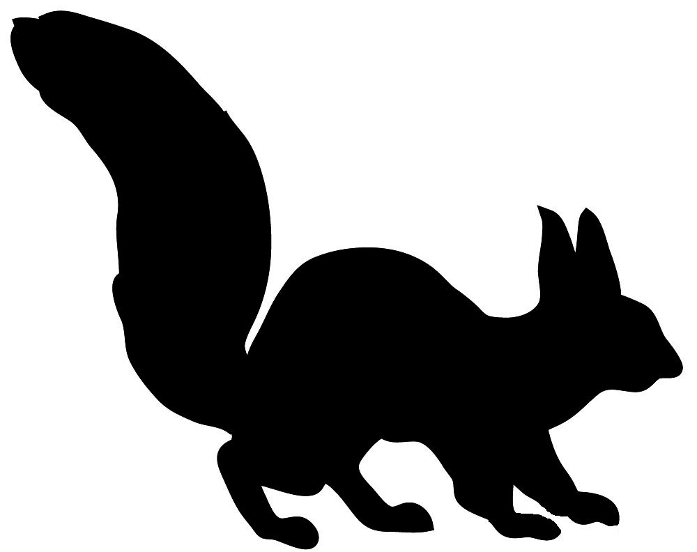 1000x792 Silhouette Of Squirrel Woodland Animal Silhouette