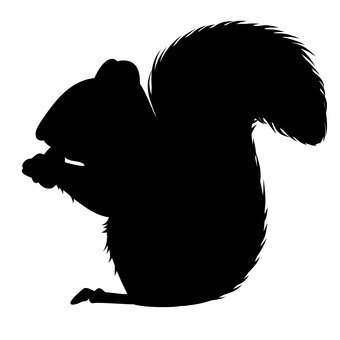 340x340 Free Silhouettes Squirrel