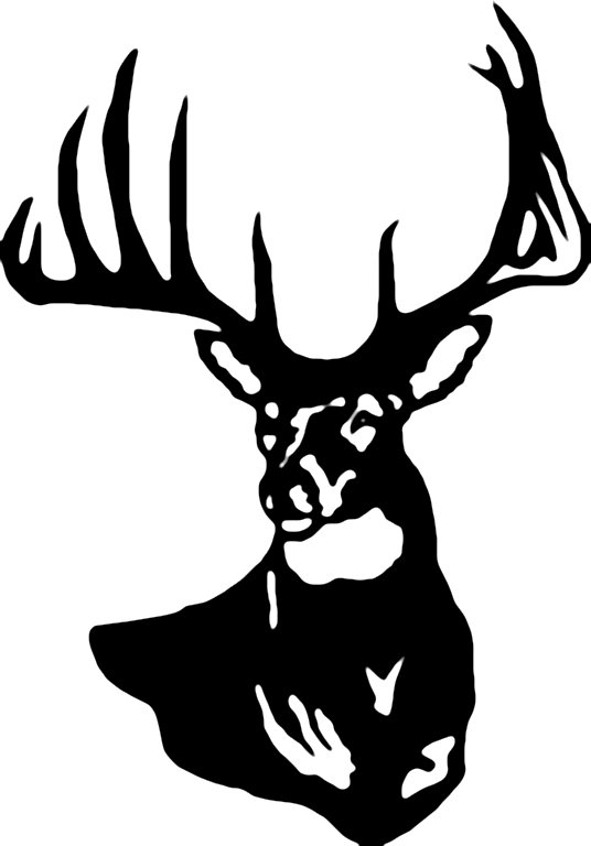 536x768 Stag Clipart Deer Head'46336
