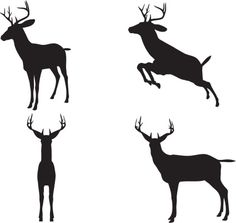 236x223 Image Result For Herd Of Stag Silhouette Type