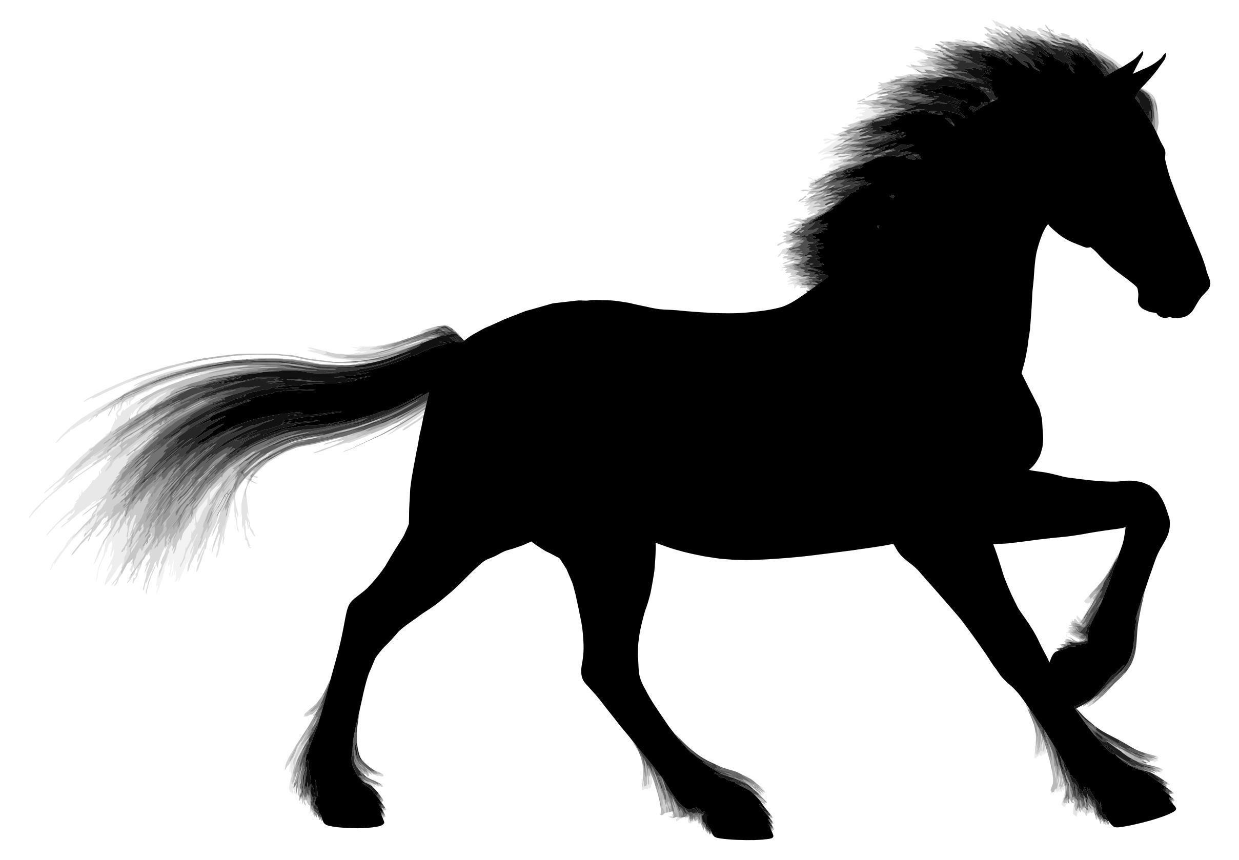 2417x1678 Majestic Stallion Silhouette Clipart