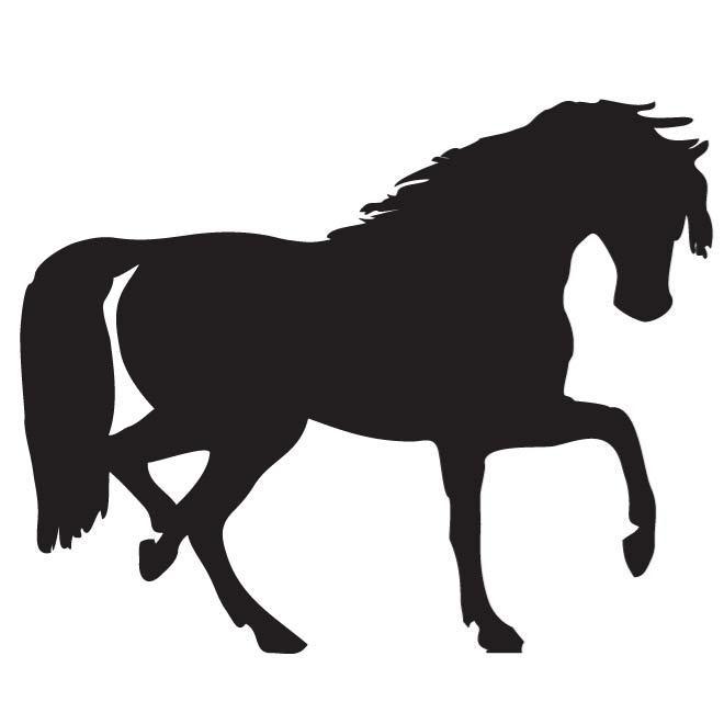 660x660 Stallion Silhouette