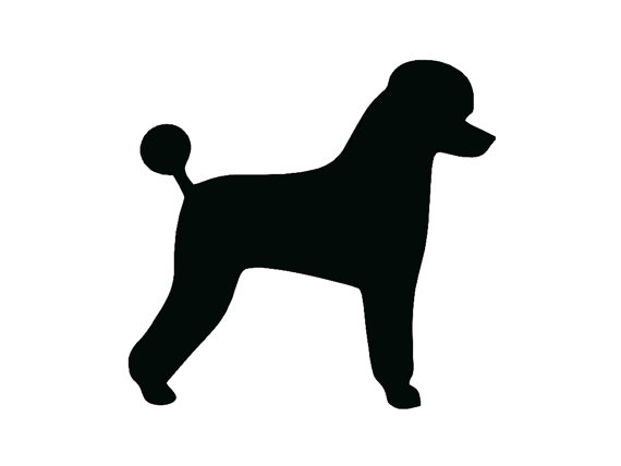 Standard Poodle Silhouette