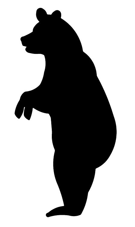 448x750 Image Result For Standing Bear Images Oz Bear