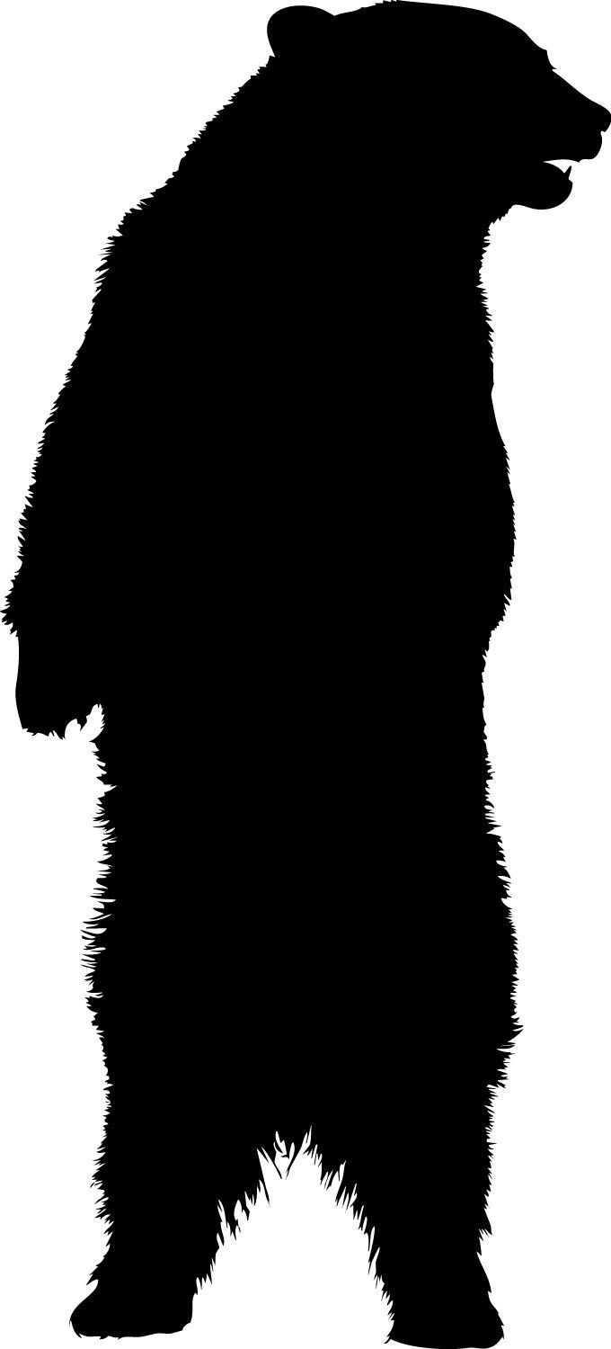 680x1500 Standing Bear Vinyl Decal Sizes Available