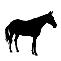 200x200 Calm Full Black Standing Horse Silhouette Tattoo Design