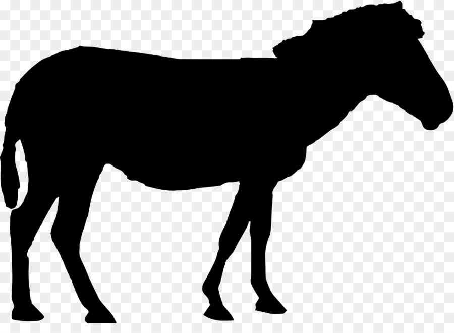 900x660 Mustang Standing Horse Silhouette