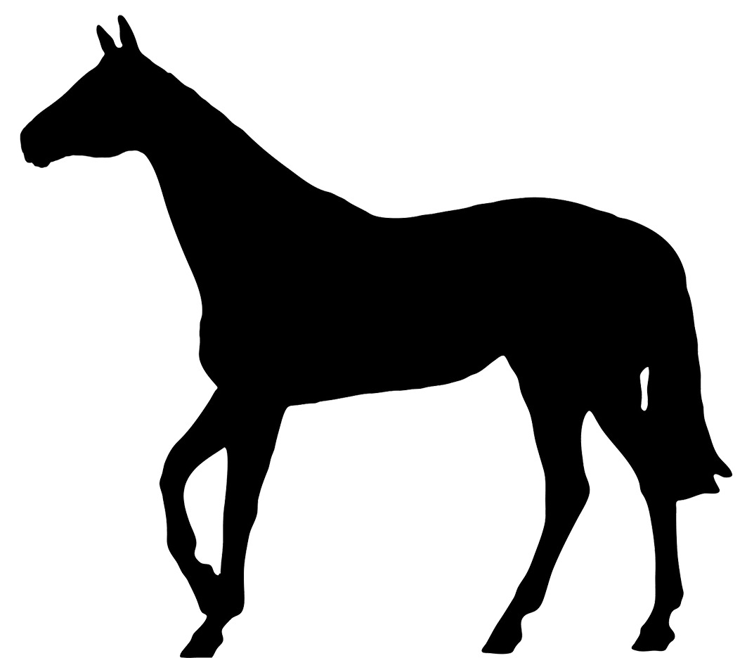 1063x936 Horse Black Silhouette Do's Amp Don'Ts Silhouettes