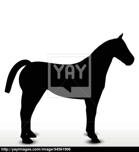 471x512 Horse Silhouette In Standing Still Position Vector