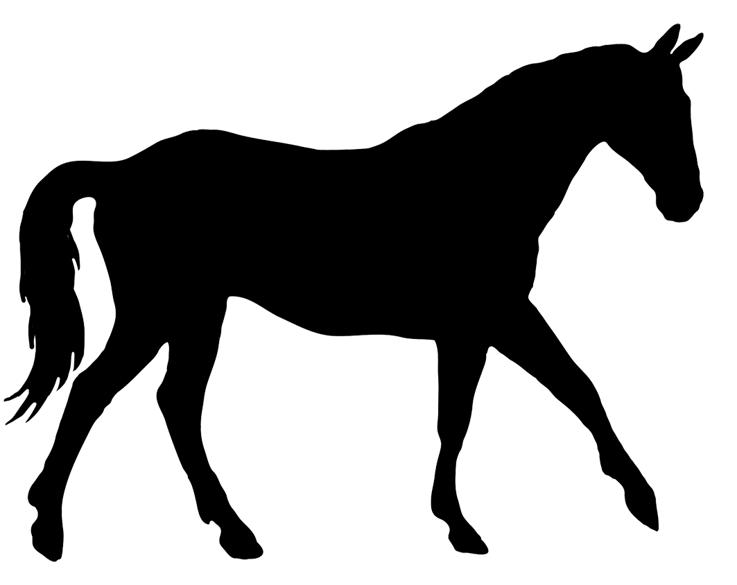 1063x844 Horse Silhouette