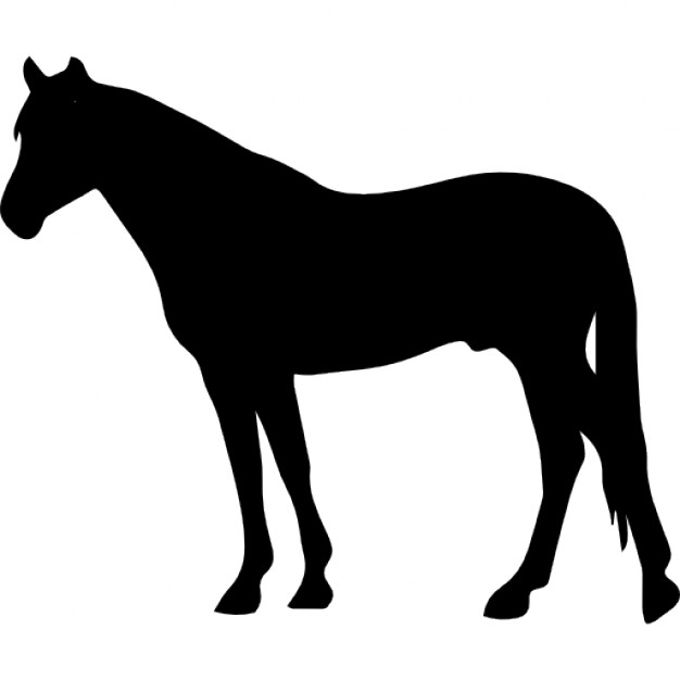 626x626 Horse Black Silhouette Facing To Left Icons Free Download