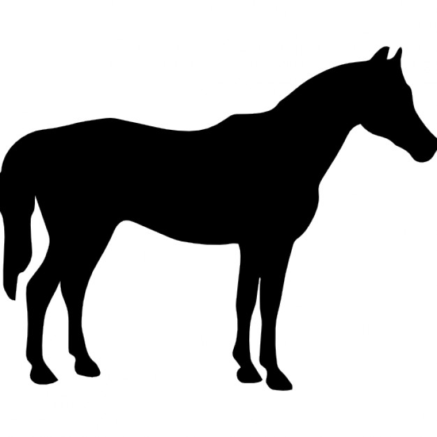 626x626 Horse Black Silhouette Facing To Right Icons Free Download