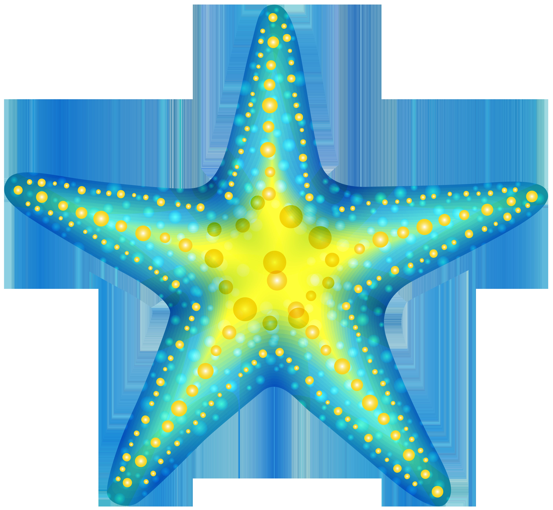 6000x5530 Starfish Vector Silhouette Clipart Graphics Starfish