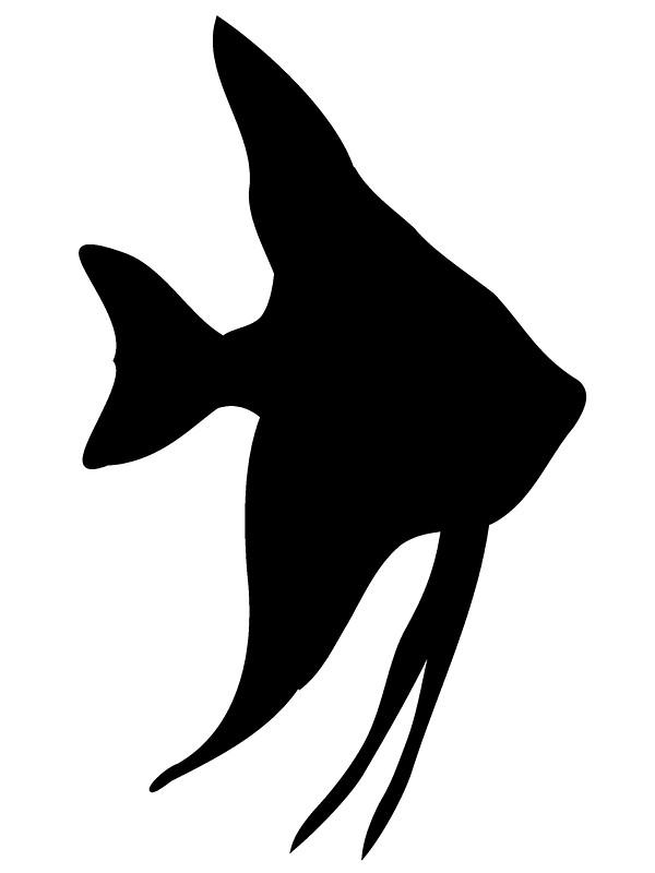 600x800 Cartoon Starfish Black And White