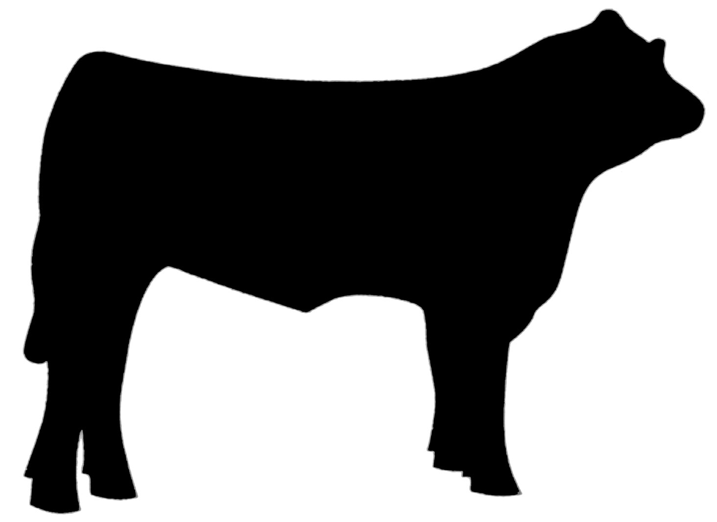 1464x1067 Steer Silhouette Clipart