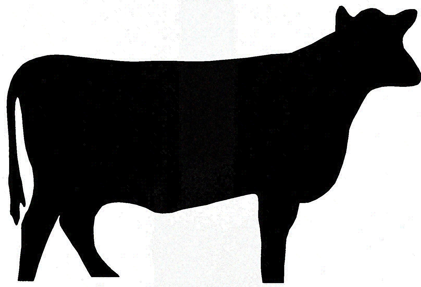 1616x1104 Cattle Clip Art Use These Free Images For Your Websites, Art