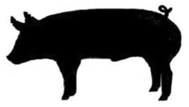 265x150 4 H Steer Silhouette Clipart