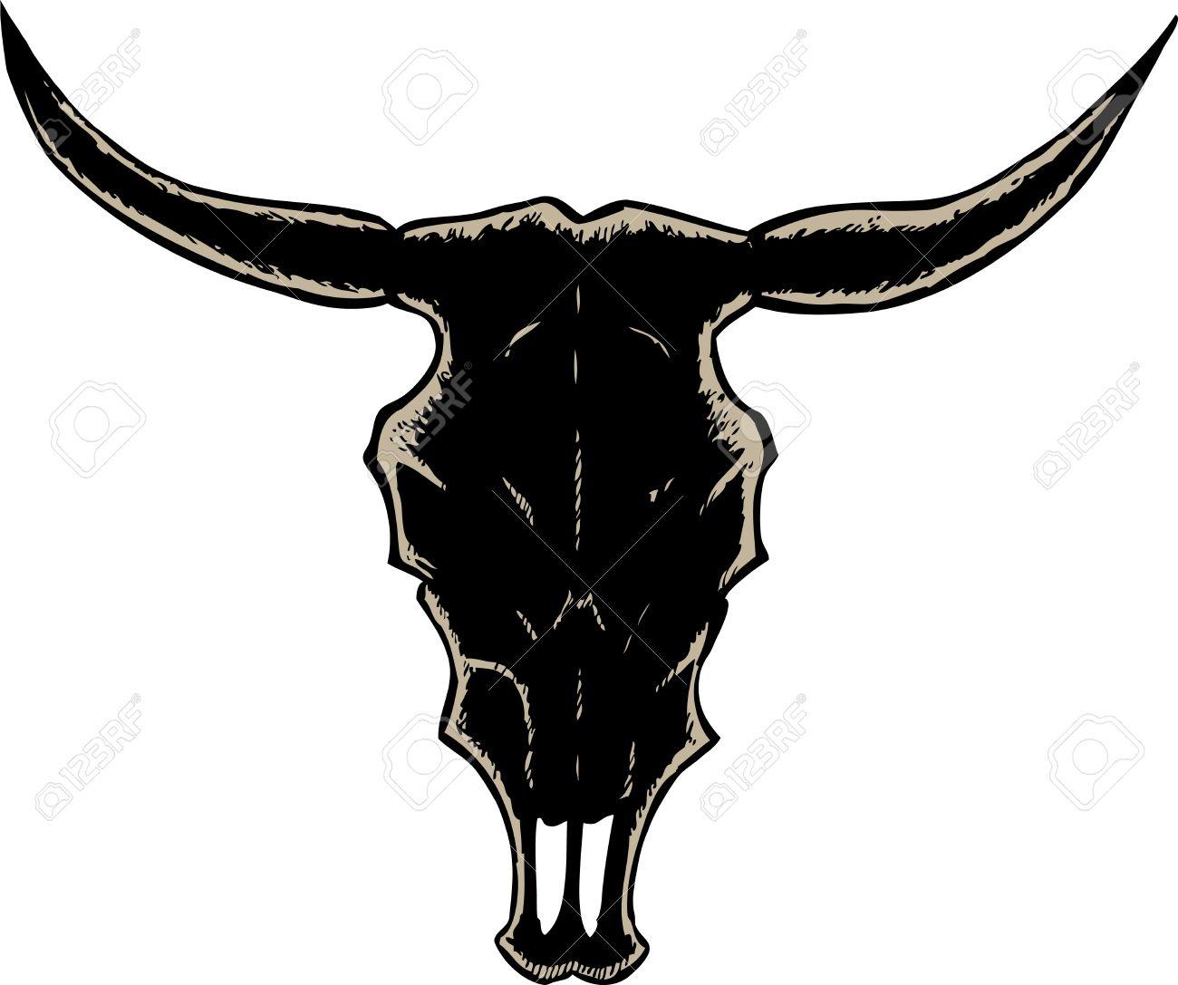 1300x1087 Steer Skull Clipart