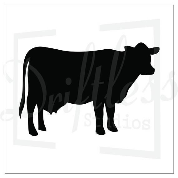 570x570 Cattle Stencil 2 Cow Stencil Steer Stencil Farm Stencil