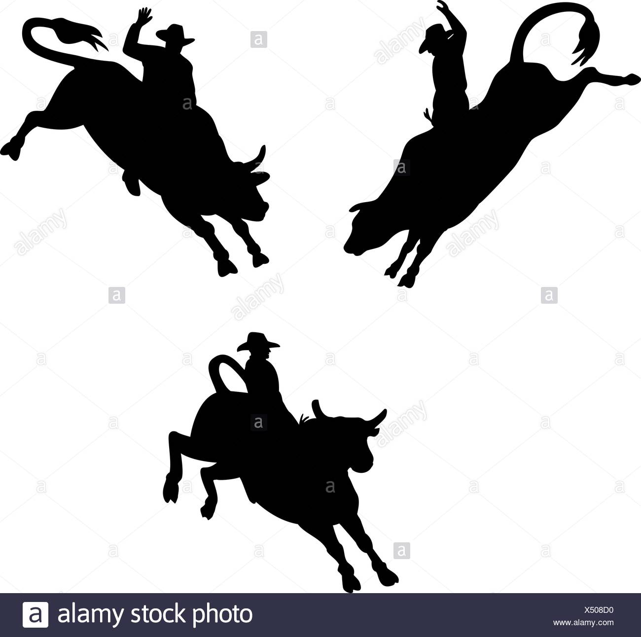 1300x1292 Rodeo Rider Black And White Stock Photos Amp Images