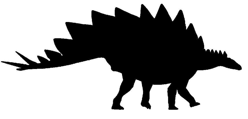 990x476 Stegosaurus Facts