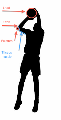 205x400 Biomechanical Principles Of A Jump Shot