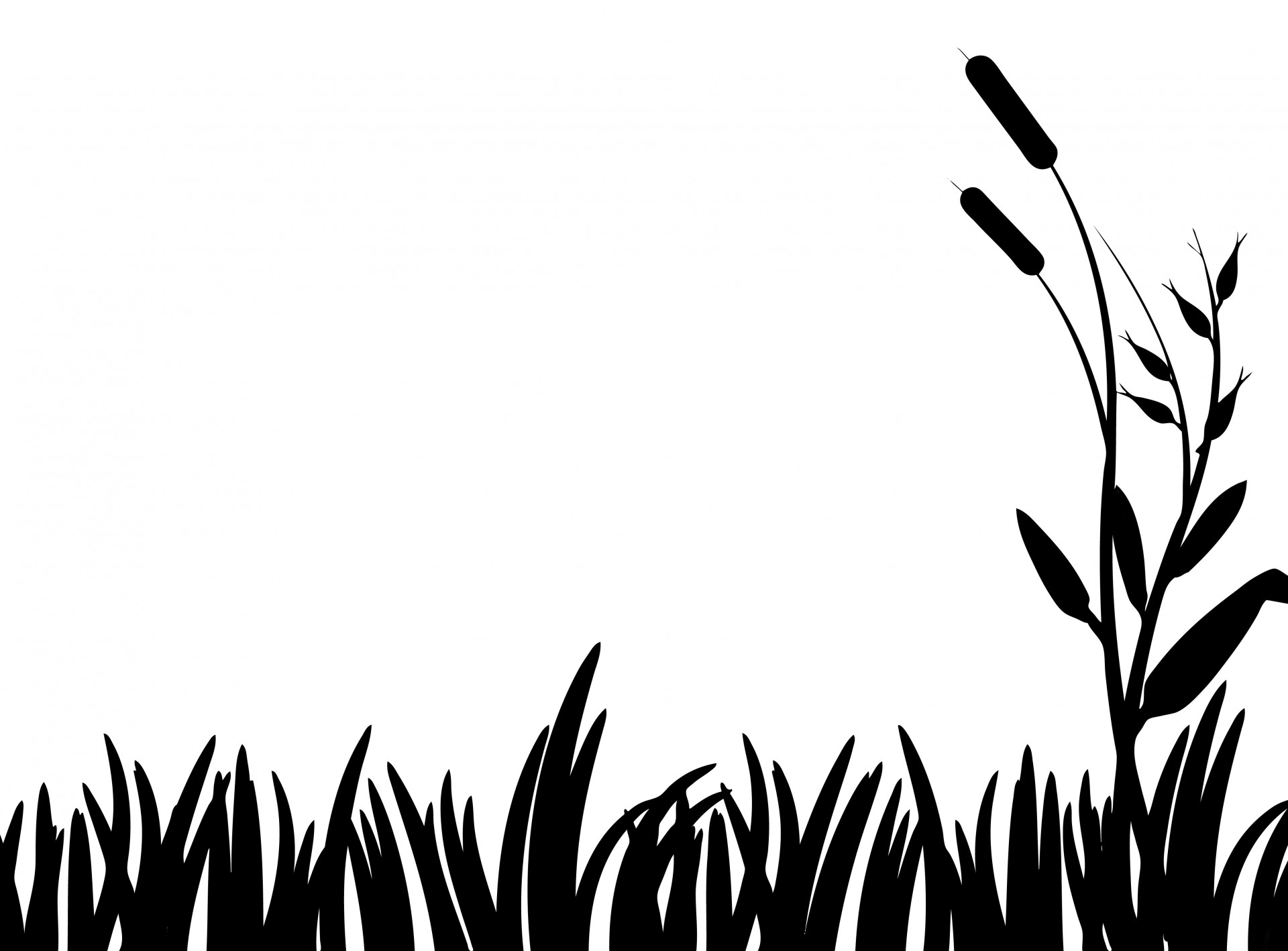 1920x1418 Grass Silhouette Clipart Free Stock Photo