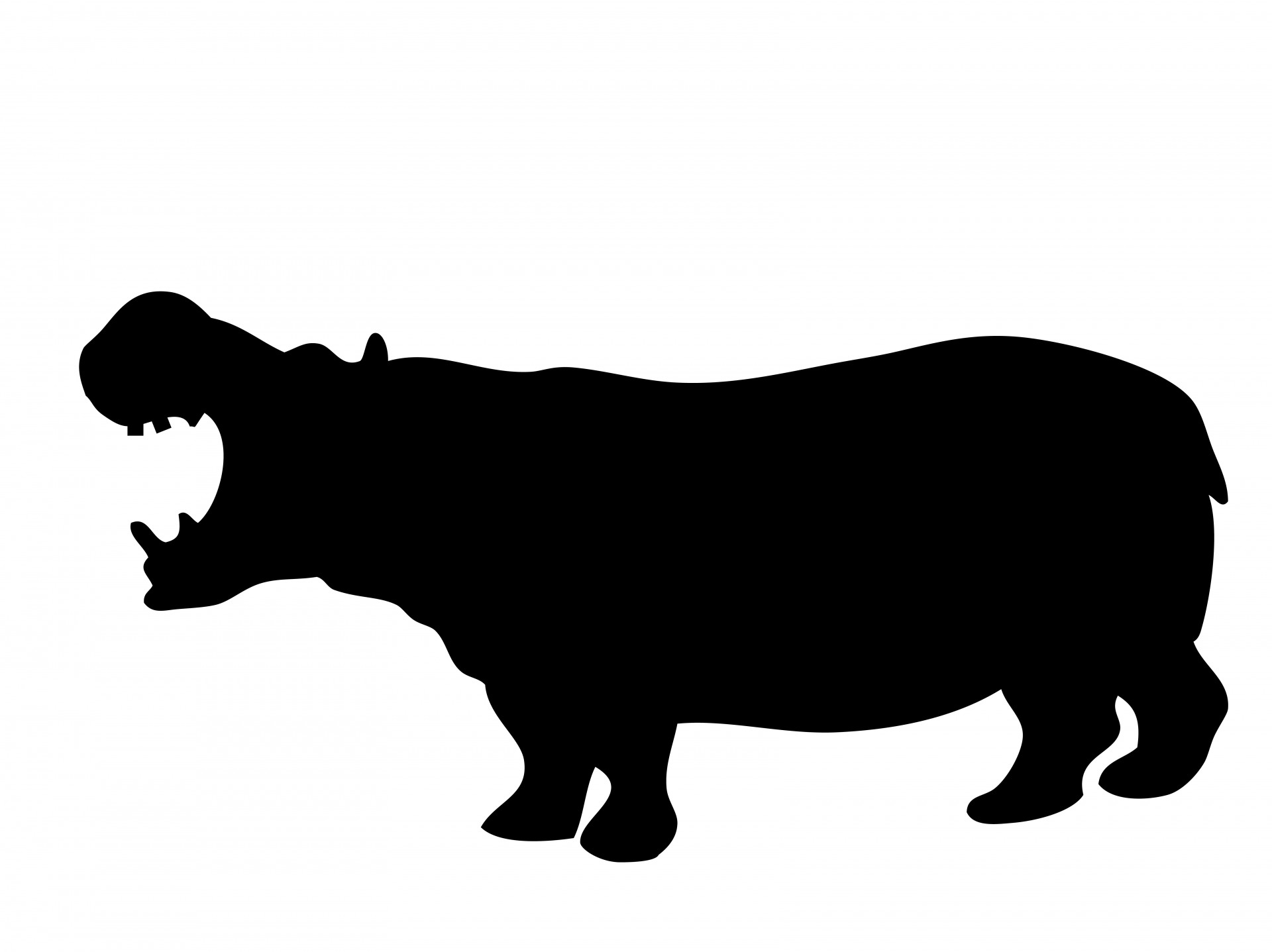 1920x1437 Hippo In Silhouette Free Stock Photo