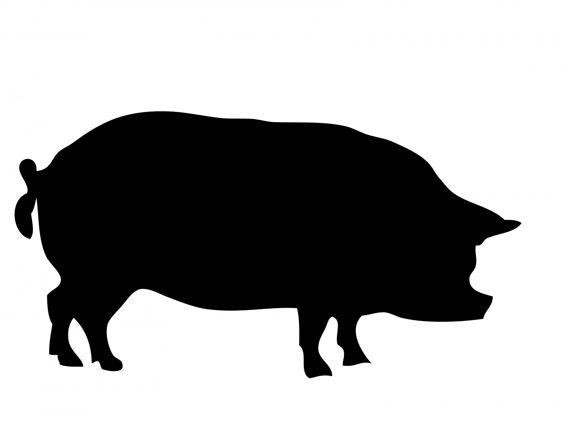 1920x1437 Pig Silhouette Free Stock Photo