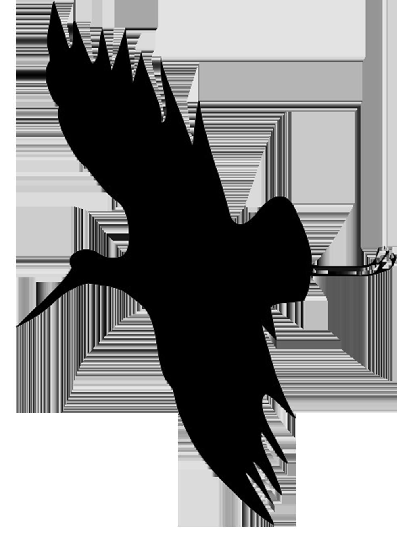 1019x1338 Bird Silhouettes