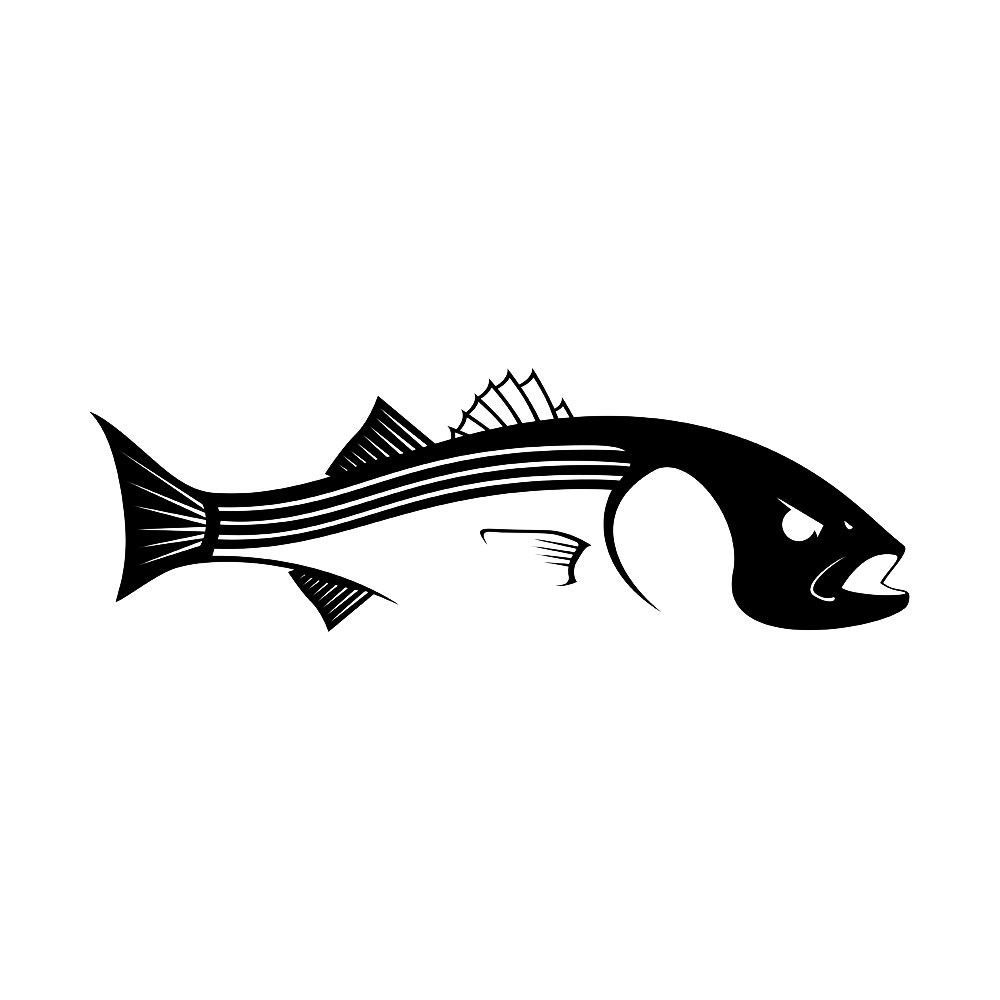 1000x1000 Skiff Life Striper Bass Fishing Decal Striped Bass Sticker Bass