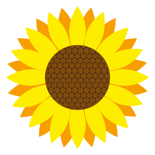 512x512 Set Of Sunflower Silhouettes