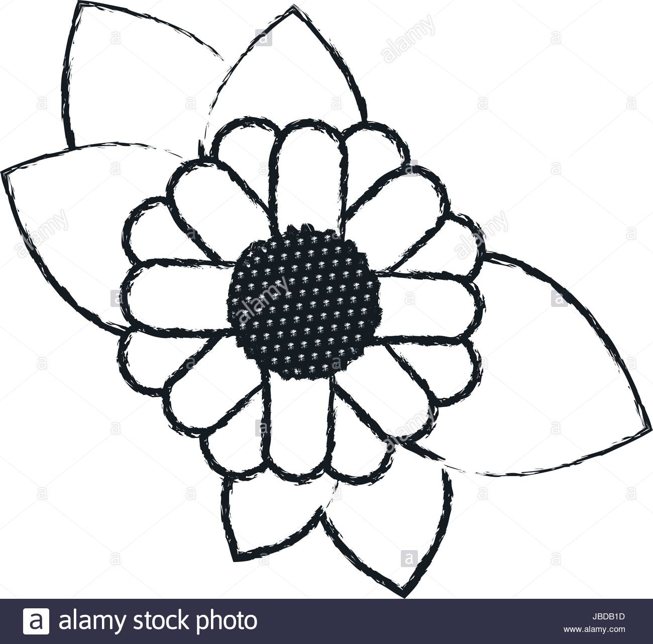 1300x1282 Monochrome Blurred Silhouette Of Abstract Sunflower With Leaves