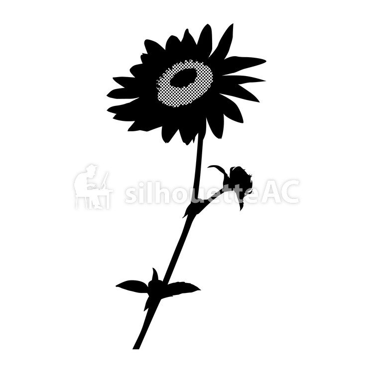 749x750 Free Silhouettes Sunflower, Up