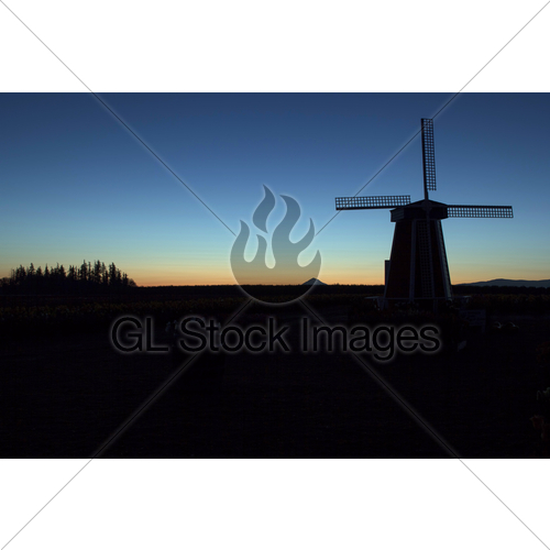 500x500 Silhouette Of Windmill At Sunrise Gl Stock Images