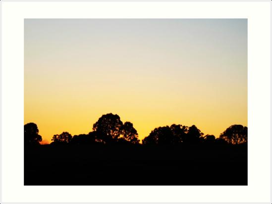 549x413 Sunrise Silhouette Art Prints By Jenelle Irvine Redbubble