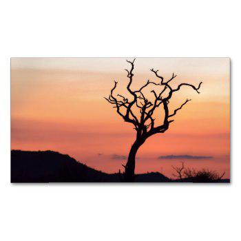 350x350 Tree At Sunset Business Cards Business Cards 100
