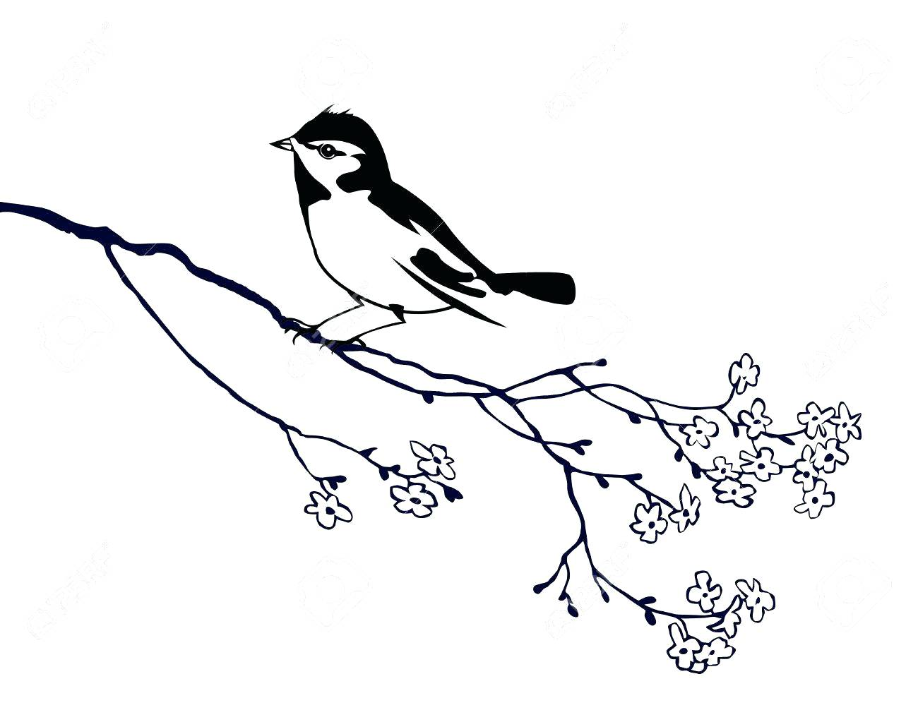 1300x1006 Vector Silhouette Of The Bird On Branch Tree Stock Traditional