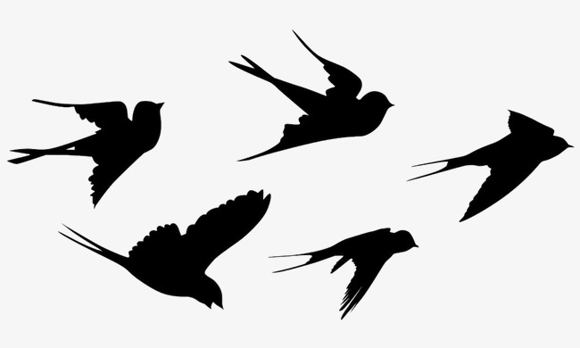 650x390 Swallow Silhouette, Swallow, Fly, Birds Png Image And Clipart