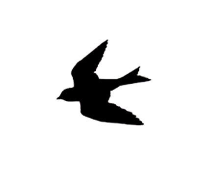 432x360 Swallow Rubber Stamp Silhouette