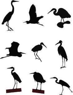 235x304 Silhouette Rice (Carew), Signed, Duck Amp Heron In Cypress Swamp, 5