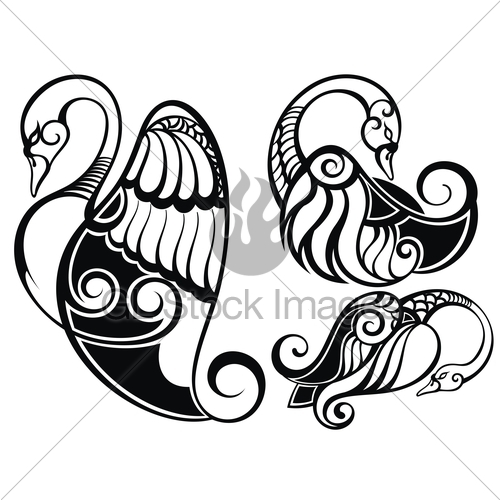 500x500 Swan Silhouette Gl Stock Images