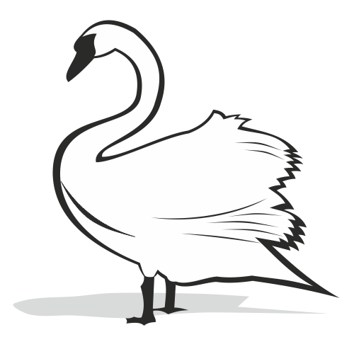 500x500 Black And White Swan Silhouette