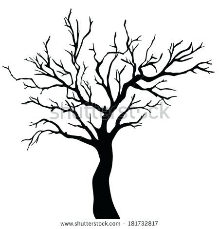 450x470 Tree Silhouette Black Stock Photos Images Pictures Tree Outline