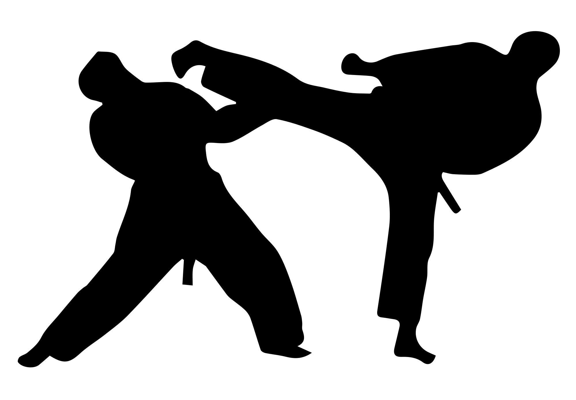 1999x1387 Taekwondo The Sagamore