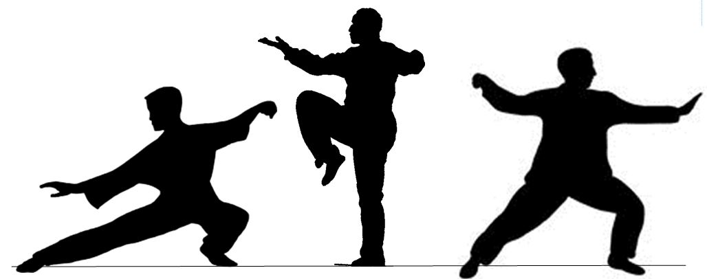 1028x406 Did You Know We Offer Tai Chi The Woodlands Township Parks