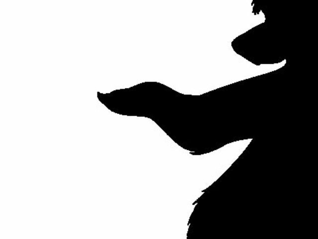 640x480 Can You Identify These 10 Disney Movie Animal Silhouettes