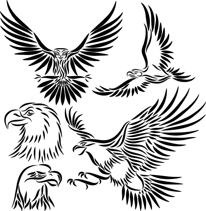 720x736 Collection Of Eagle Silhouette Tattoo Designs